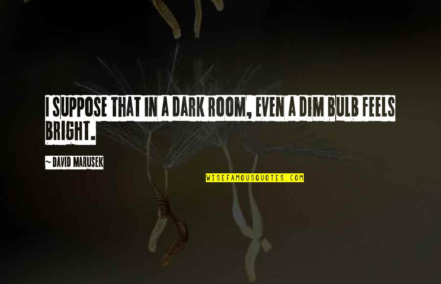 Dim Bulb Quotes By David Marusek: I suppose that in a dark room, even
