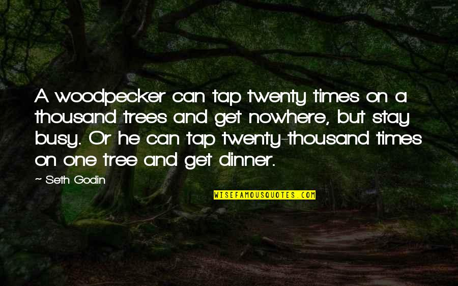 Dinner For One Quotes By Seth Godin: A woodpecker can tap twenty times on a