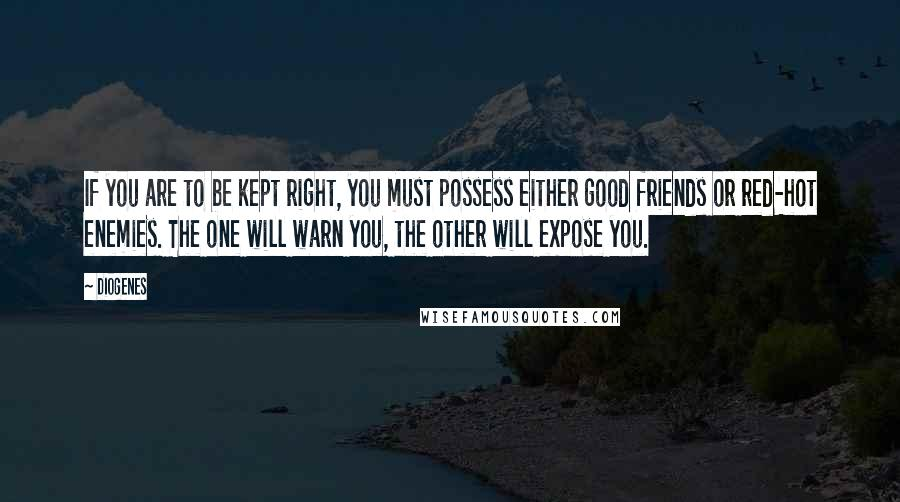 Diogenes quotes: If you are to be kept right, you must possess either good friends or red-hot enemies. The one will warn you, the other will expose you.