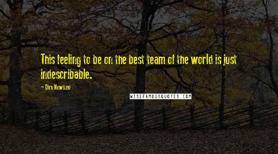 Dirk Nowitzki quotes: This feeling to be on the best team of the world is just indescribable.