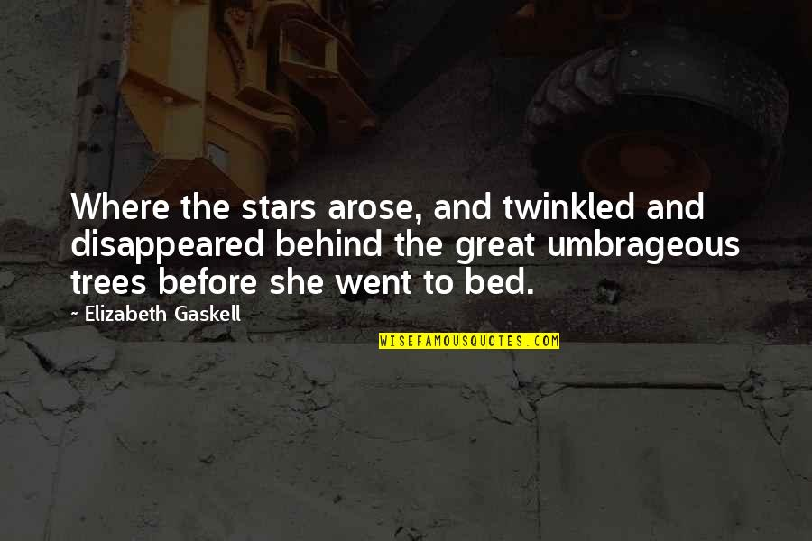 Disappeared Quotes By Elizabeth Gaskell: Where the stars arose, and twinkled and disappeared