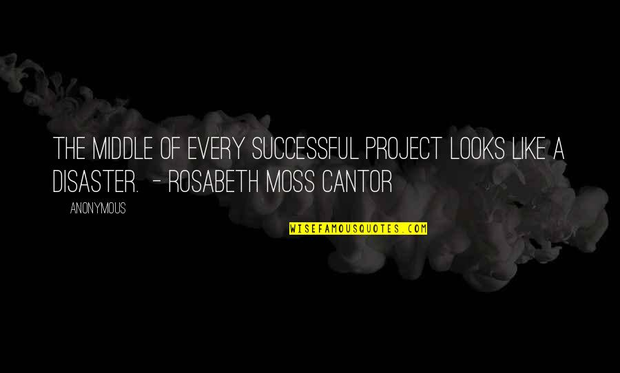 Disaster Quotes By Anonymous: The middle of every successful project looks like
