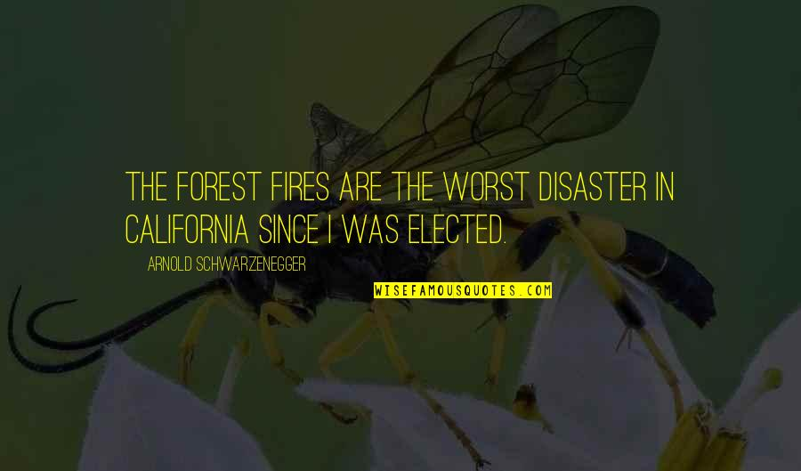 Disaster Quotes By Arnold Schwarzenegger: The forest fires are the worst disaster in