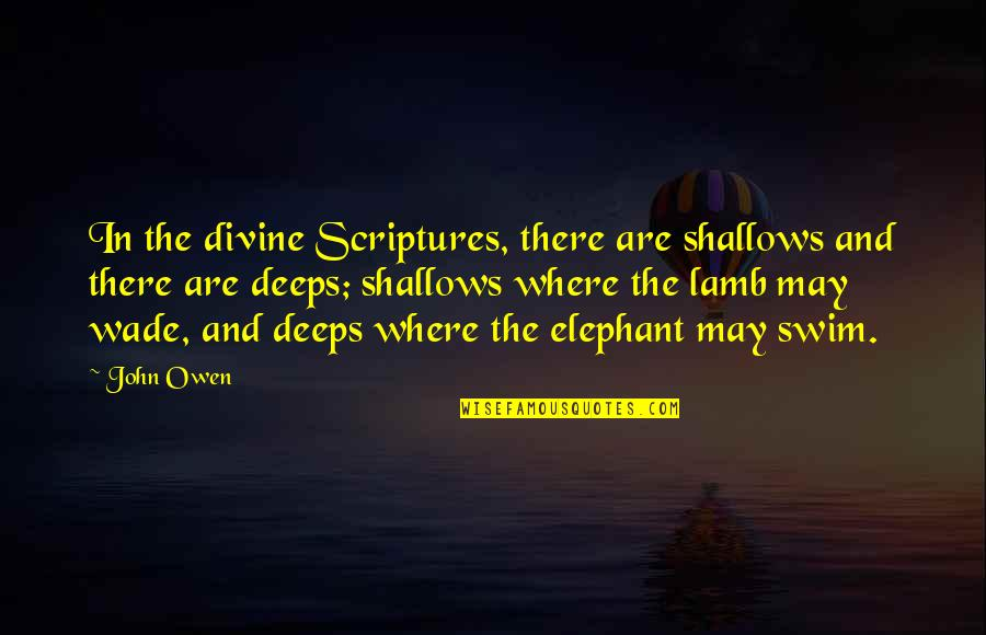 Discernment Quotes By John Owen: In the divine Scriptures, there are shallows and