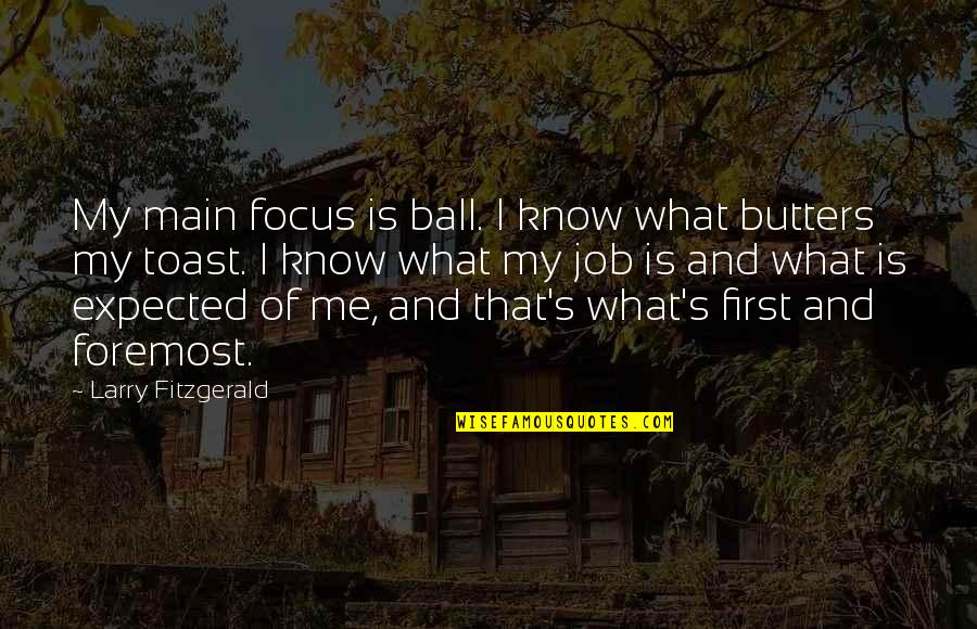 Dislodge Quotes By Larry Fitzgerald: My main focus is ball. I know what