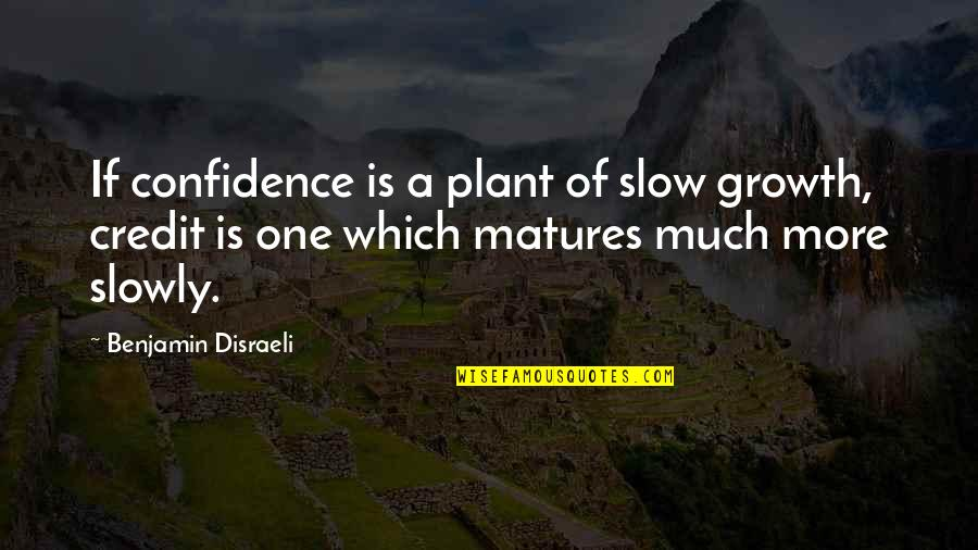 Disraeli Quotes By Benjamin Disraeli: If confidence is a plant of slow growth,