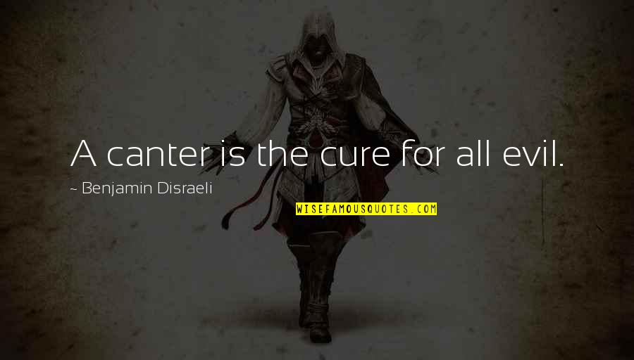 Disraeli Quotes By Benjamin Disraeli: A canter is the cure for all evil.