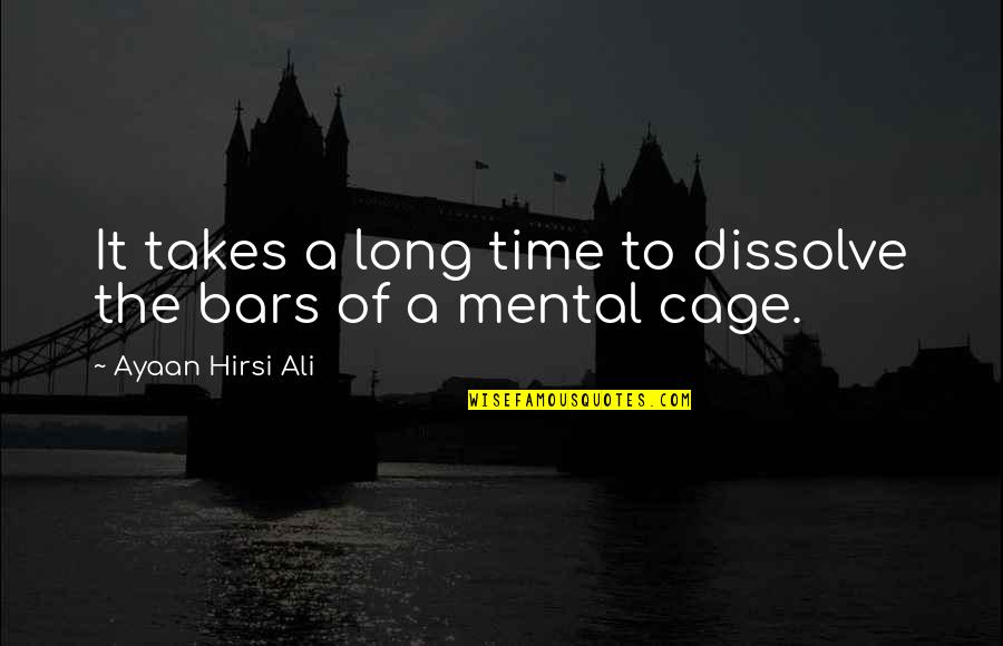 Dissolve Quotes By Ayaan Hirsi Ali: It takes a long time to dissolve the