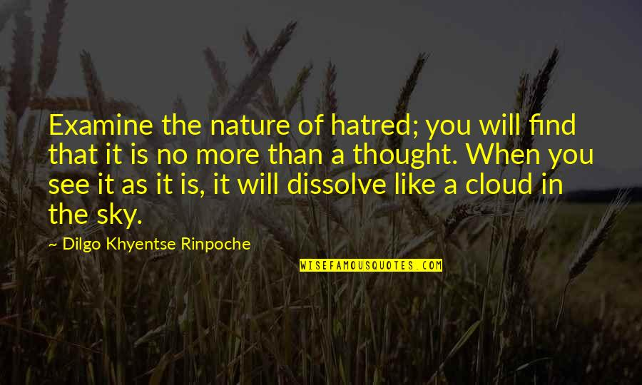 Dissolve Quotes By Dilgo Khyentse Rinpoche: Examine the nature of hatred; you will find