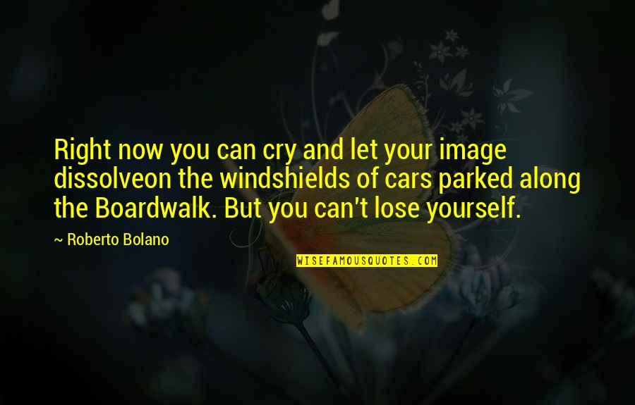 Dissolve Quotes By Roberto Bolano: Right now you can cry and let your