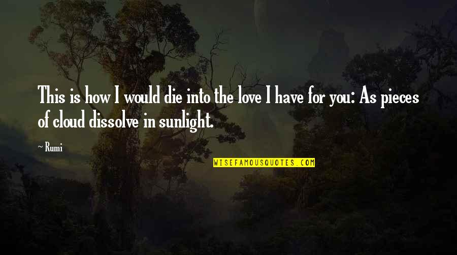 Dissolve Quotes By Rumi: This is how I would die into the