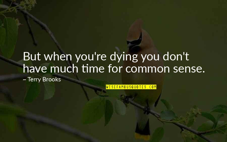 Diuretics Quotes By Terry Brooks: But when you're dying you don't have much