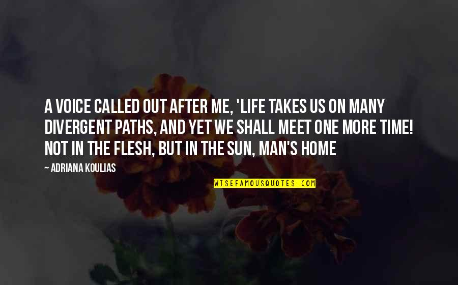 Divergent Quotes By Adriana Koulias: A voice called out after me, 'life takes