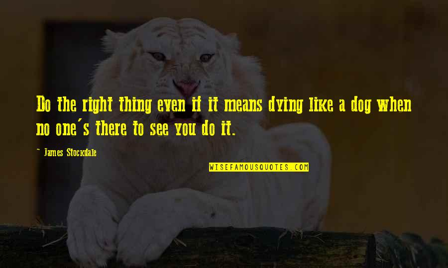 Do It Right Quotes By James Stockdale: Do the right thing even if it means