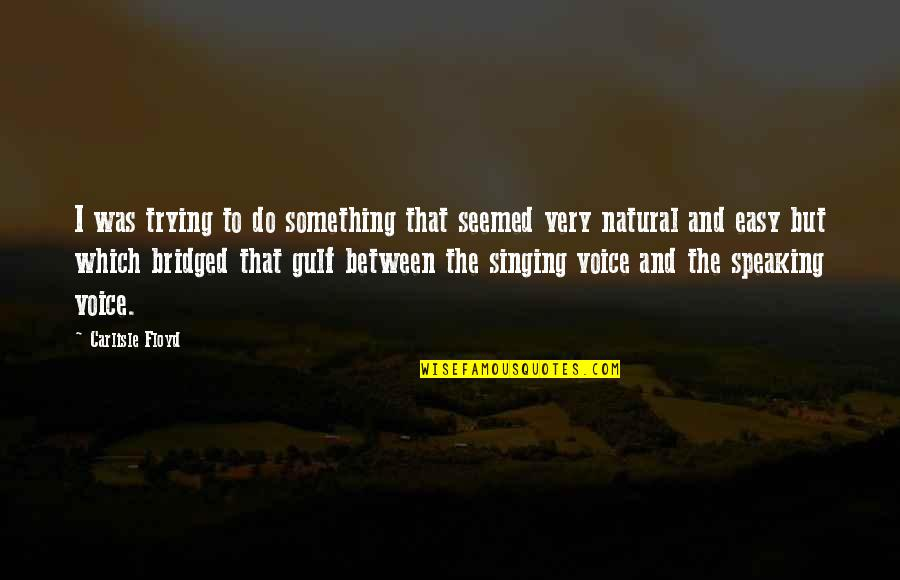 Do Something Quotes By Carlisle Floyd: I was trying to do something that seemed