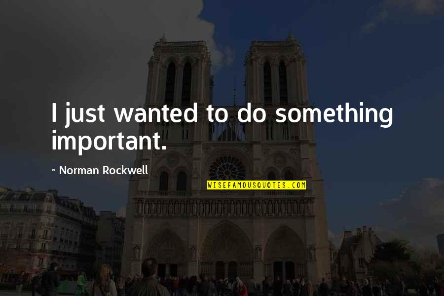 Do Something Quotes By Norman Rockwell: I just wanted to do something important.