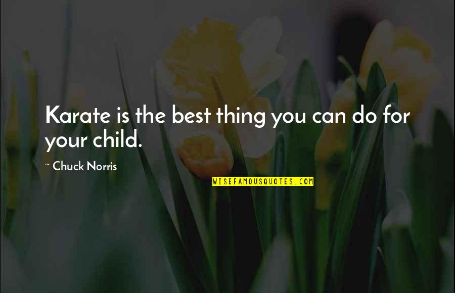 Do The Best Thing Quotes By Chuck Norris: Karate is the best thing you can do