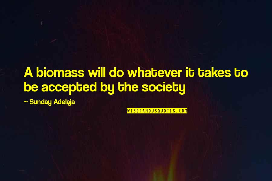 Do Whatever It Takes Quotes By Sunday Adelaja: A biomass will do whatever it takes to