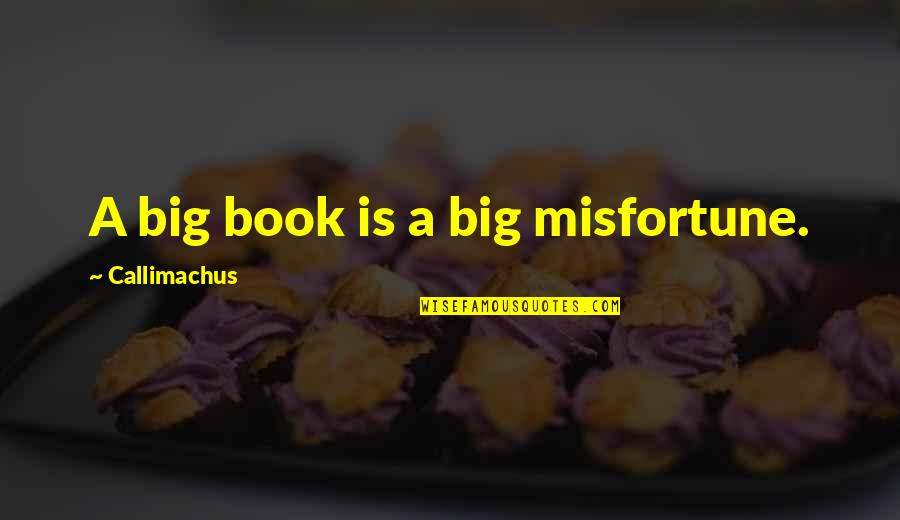 Doctors Offices Quotes By Callimachus: A big book is a big misfortune.