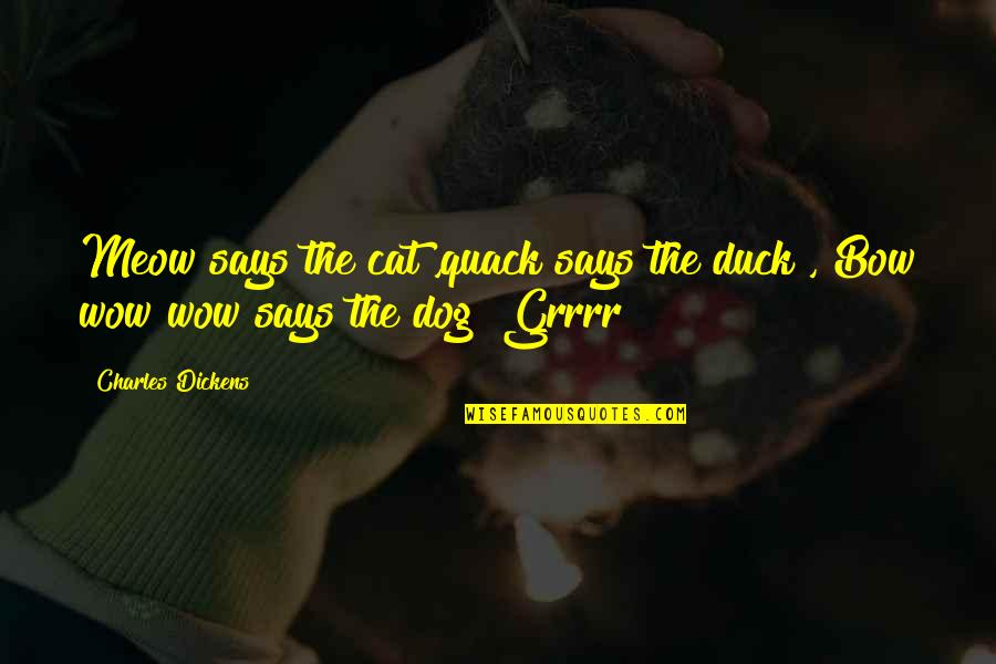 Dog Cat Quotes By Charles Dickens: Meow says the cat ,quack says the duck