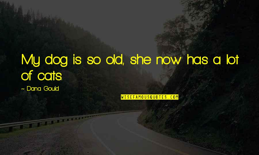 Dog Cat Quotes By Dana Gould: My dog is so old, she now has