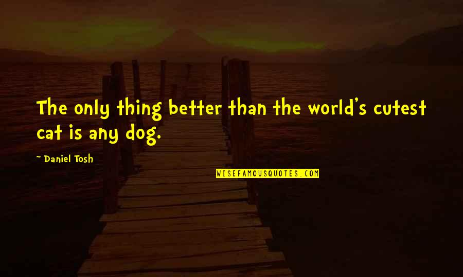 Dog Cat Quotes By Daniel Tosh: The only thing better than the world's cutest