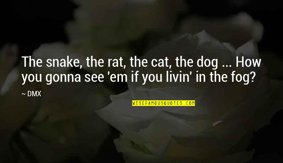 Dog Cat Quotes By DMX: The snake, the rat, the cat, the dog