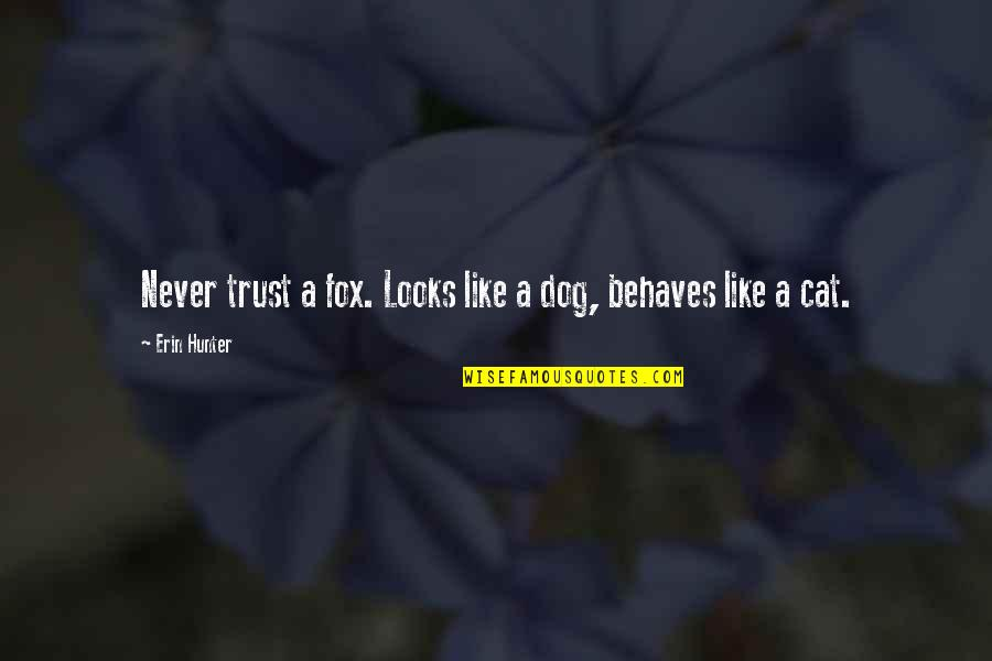 Dog Cat Quotes By Erin Hunter: Never trust a fox. Looks like a dog,