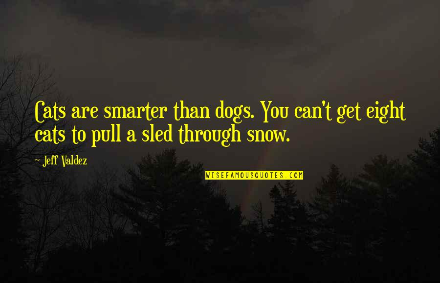 Dog Cat Quotes By Jeff Valdez: Cats are smarter than dogs. You can't get