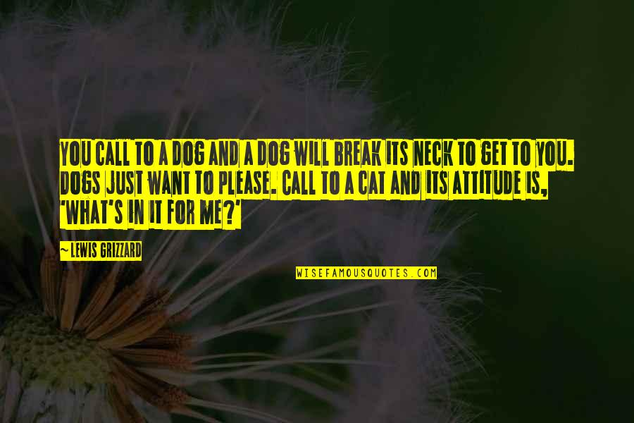 Dog Cat Quotes By Lewis Grizzard: You call to a dog and a dog