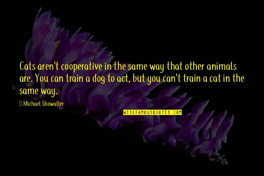 Dog Cat Quotes By Michael Showalter: Cats aren't cooperative in the same way that