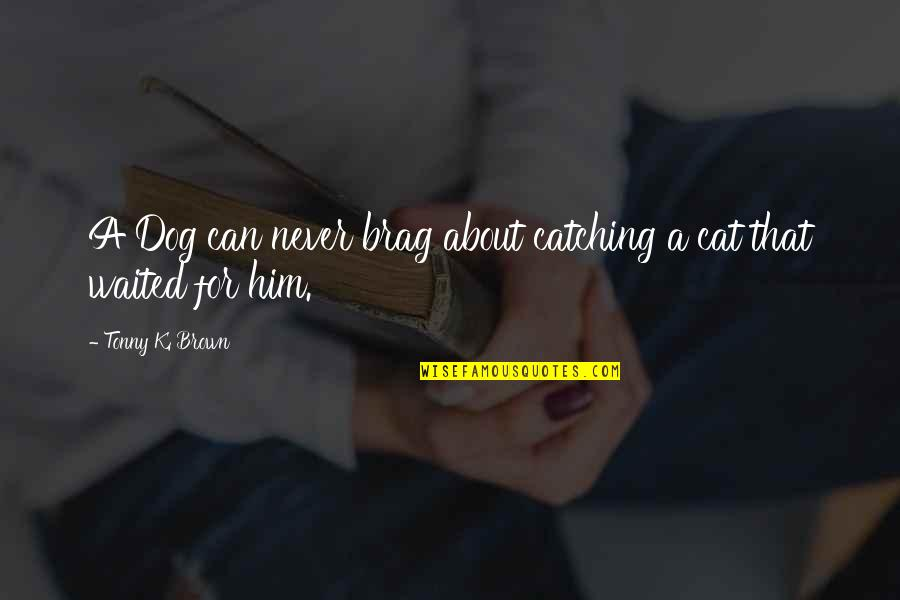 Dog Cat Quotes By Tonny K. Brown: A Dog can never brag about catching a