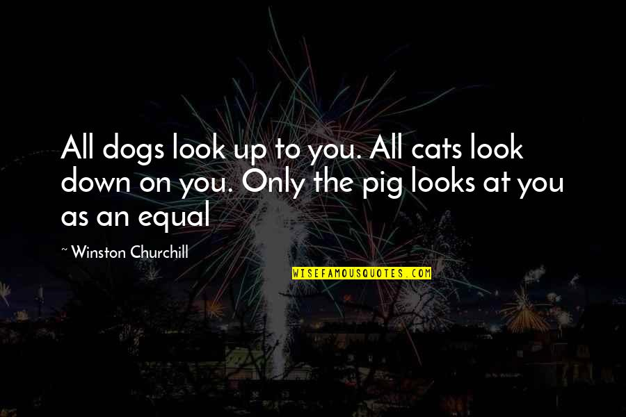 Dog Cat Quotes By Winston Churchill: All dogs look up to you. All cats