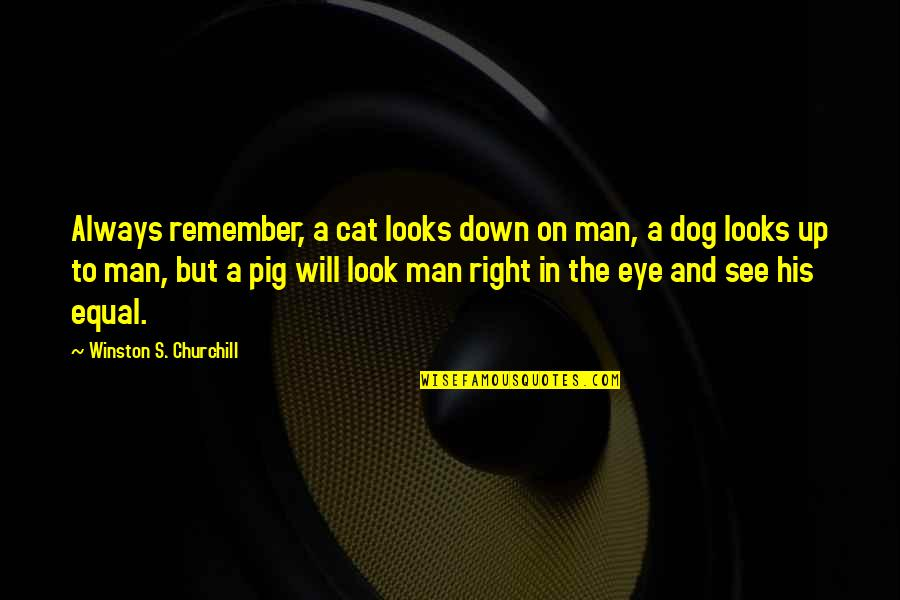 Dog Cat Quotes By Winston S. Churchill: Always remember, a cat looks down on man,