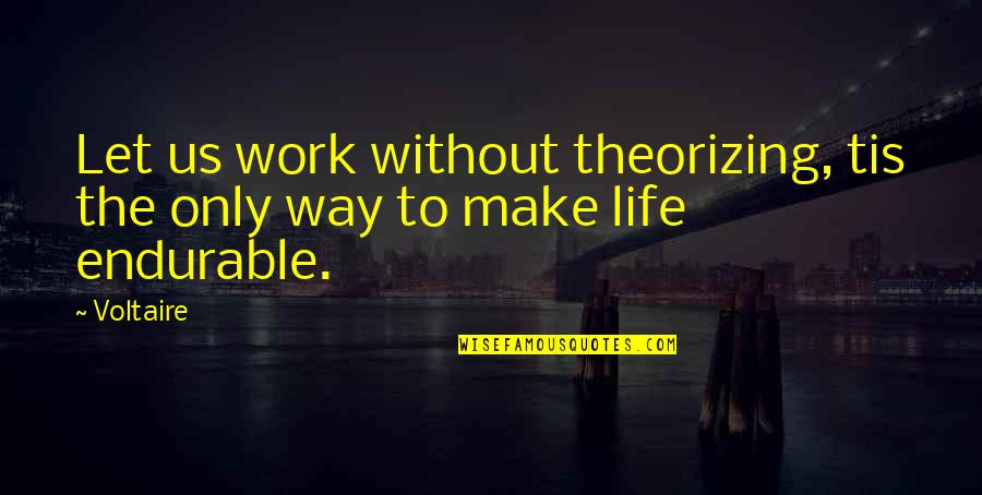 Dog Chasing Tail Quotes By Voltaire: Let us work without theorizing, tis the only