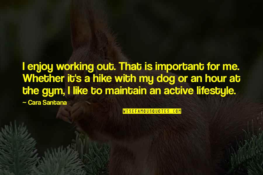 Dog Hike Quotes By Cara Santana: I enjoy working out. That is important for
