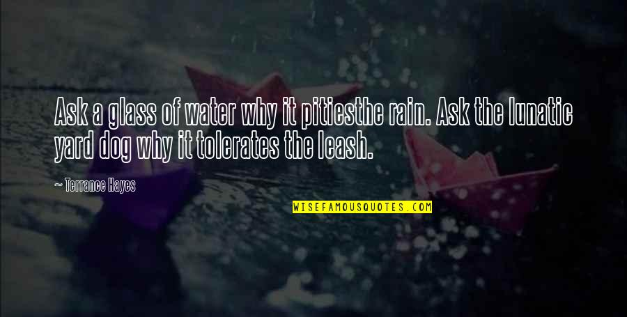 Dog Leash Quotes By Terrance Hayes: Ask a glass of water why it pitiesthe