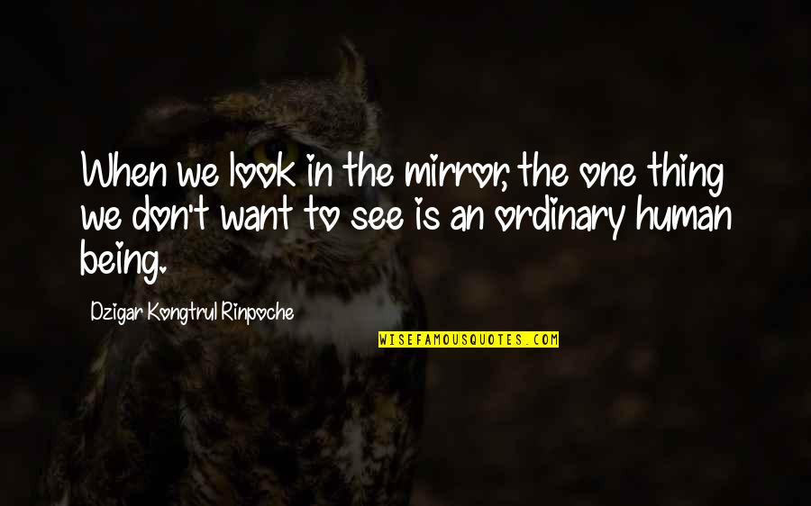 Dog Pee Quotes By Dzigar Kongtrul Rinpoche: When we look in the mirror, the one