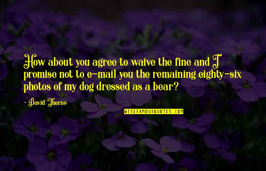 Dog Photos And Quotes By David Thorne: How about you agree to waive the fine