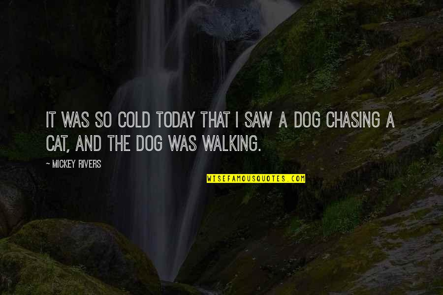 Dog Walking Quotes By Mickey Rivers: It was so cold today that I saw