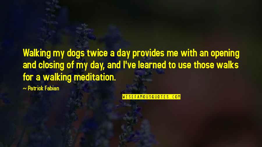 Dog Walking Quotes By Patrick Fabian: Walking my dogs twice a day provides me