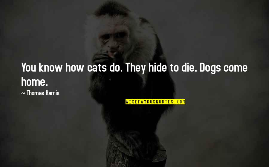 Dogs Death Quotes By Thomas Harris: You know how cats do. They hide to