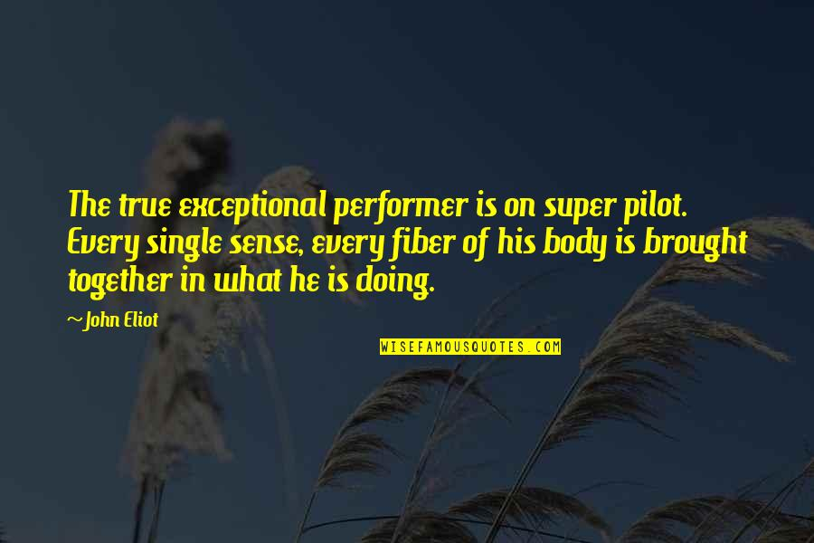 Doing It Together Quotes By John Eliot: The true exceptional performer is on super pilot.