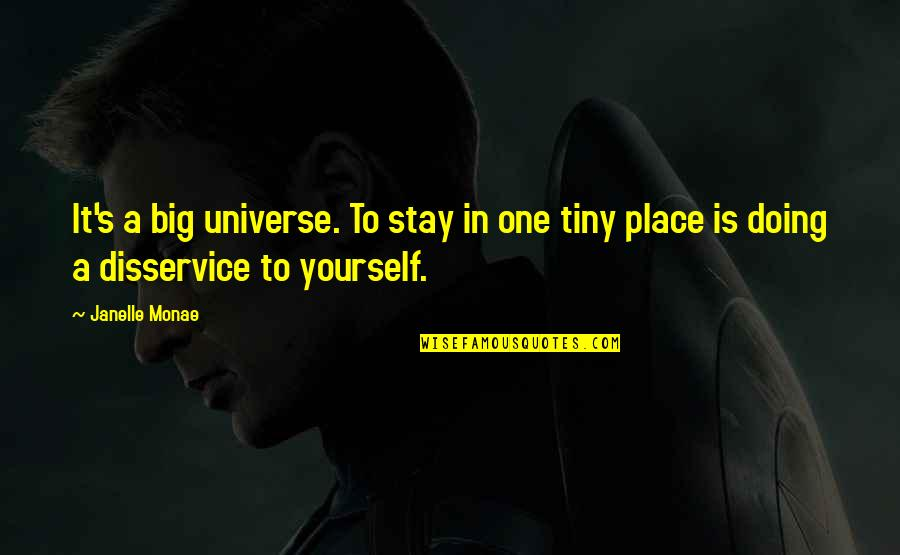 Doing It Yourself Quotes By Janelle Monae: It's a big universe. To stay in one
