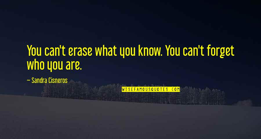 Doing The Basics Quotes By Sandra Cisneros: You can't erase what you know. You can't