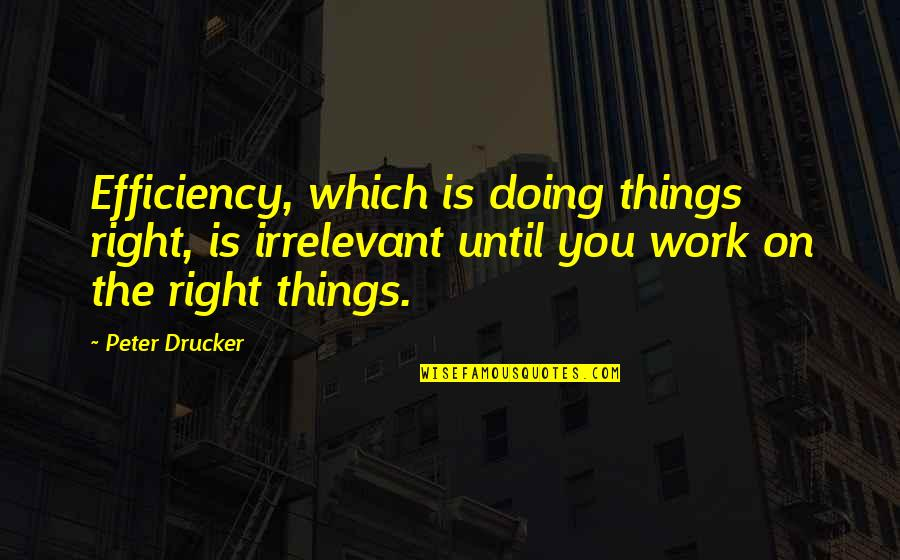 Doing Things Right Quotes By Peter Drucker: Efficiency, which is doing things right, is irrelevant