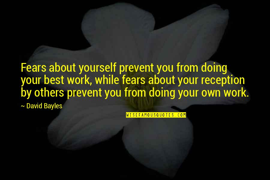 Doing Work For Others Quotes By David Bayles: Fears about yourself prevent you from doing your