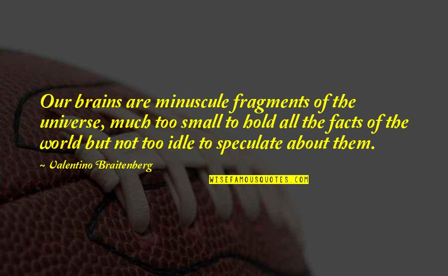 Dokapon Kingdom Quotes By Valentino Braitenberg: Our brains are minuscule fragments of the universe,
