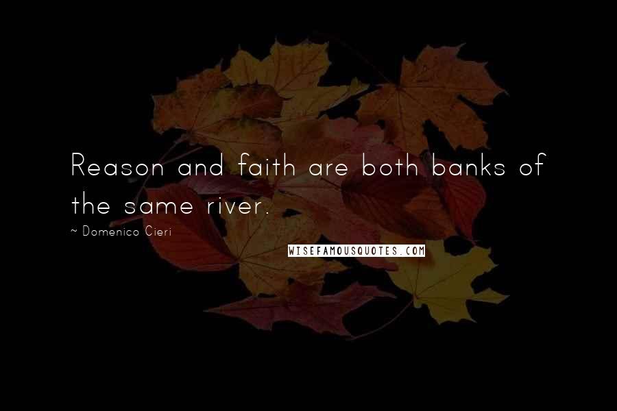 Domenico Cieri quotes: Reason and faith are both banks of the same river.