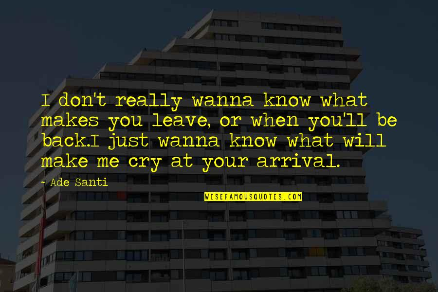 Don Cry Quotes By Ade Santi: I don't really wanna know what makes you